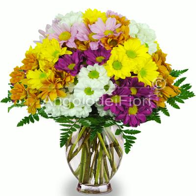 Bouquet di Margherite colori misti