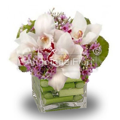 Cymbidium flowers pink glass composition
