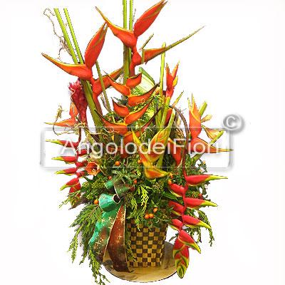 Composizione di Fiori tropicali