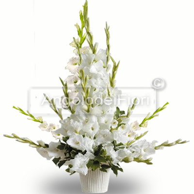 Composition with White Flowers