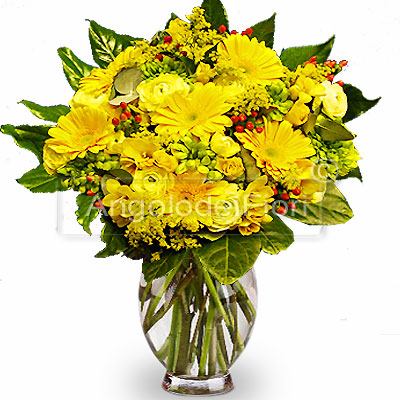 Bouquet Fiori Gialli.Bouquet Of Yellow Flowers Fresh Shipping At Domicile