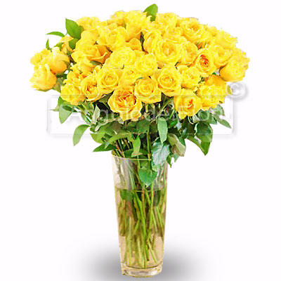 Package of Fifty yellow roses and green complementary