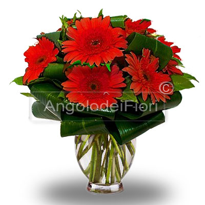 Red gerberas Bouquet for graduation.