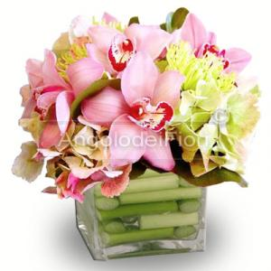Composition with pink Cymbidium flowers in glass vase