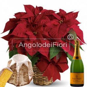 Stella di Natale con Pandoro e Champagne