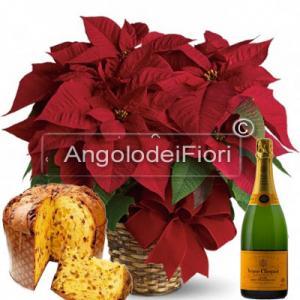 Stella di Natale con Panettone e Champagne