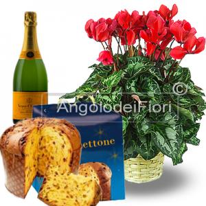To send your Christmas card with a beautiful cyclamen plant  paired with panettone and sparkling wine