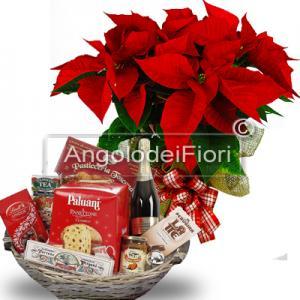 Cesto Golden Italy con abbinata un pianta di stella di Natale