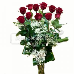 Eleven red roses for Degree