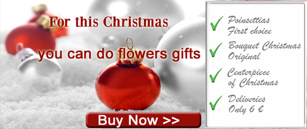 Buy your Christmas gifts